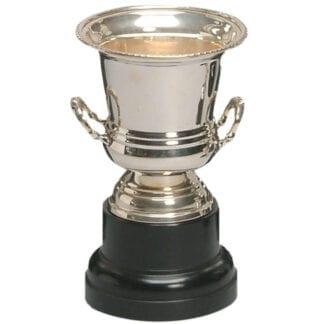 Ashton Trophy Cup