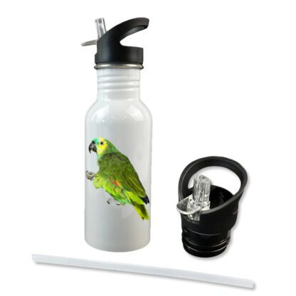 SS Water Bottle with Straw lid